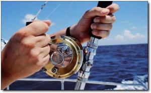 加海游艇 (4)_加海游艇好玩吗_加海游艇怎么去(在哪里)_加海游艇门票多少钱?_加海游艇