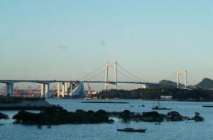 海沧大桥 (6)_海沧大桥