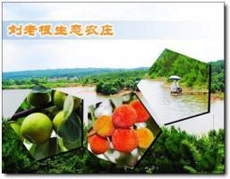 刘老根生态休闲农庄 (3)_刘老根生态休闲农庄
