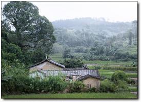 荏畲村 (6)_荏畲村