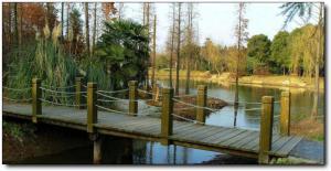 洋麻山森林公园 (3)_洋麻山森林公园