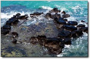 漳浦火山岛 (5)_漳浦火山岛