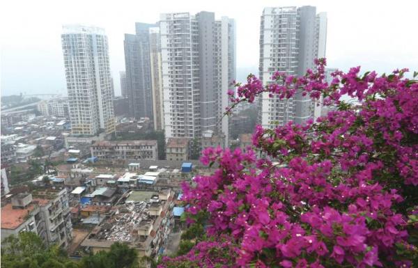 鸿山公园:登高远眺享恬淡时光
