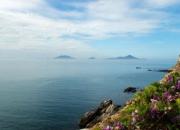 漳浦东山岛