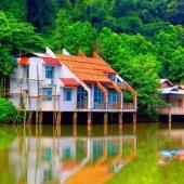 集美杏林湾钓鱼