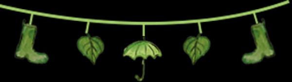 春分丨厦门要正式进入雨季了!想要春游有哪些地方可以选择呢?
