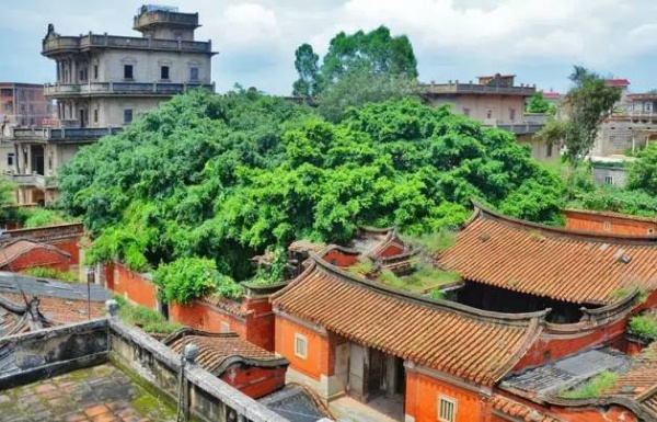 集美周边游丨这个面积不足1平方公里的闽南古村落,竟藏着99栋风格迥异的华侨建筑!