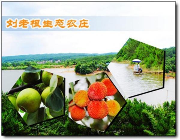 刘老根生态休闲农庄_同安刘老根生态休闲农庄_刘老根生态休闲农庄