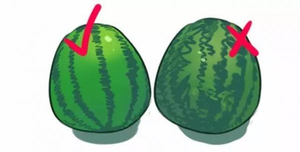 西瓜为什么不能用勺子挖起来吃?还不赶紧来看看!