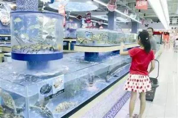 紧急提醒!同安西柯、丙洲已有多人吃海蛎中毒!受赤潮影响,这些水产品禁止入厦交易!